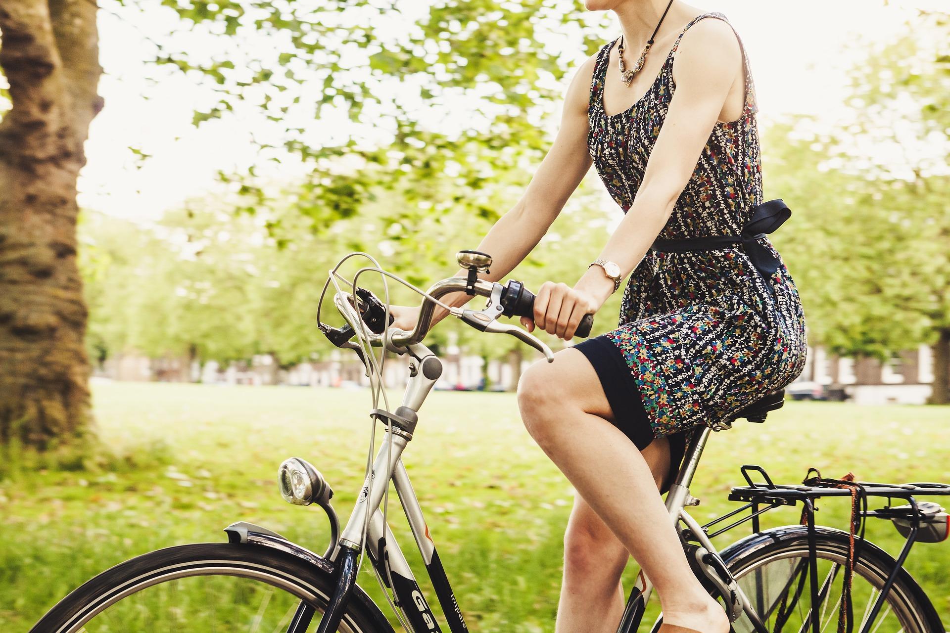 Delta i Cykelfrämjandets Cyklistvelometer